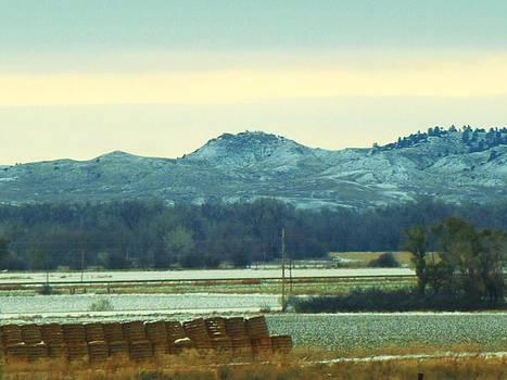 Montana by Fawn Whelahan