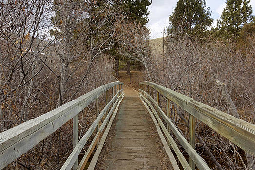 Montana Foot Bridge by Dana Moyer