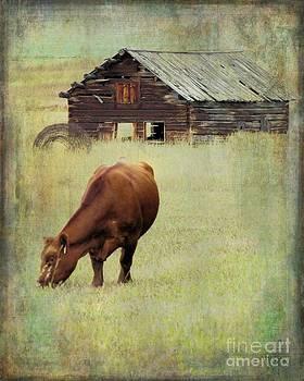 Montana Grazer by Sharon Marcella Marston