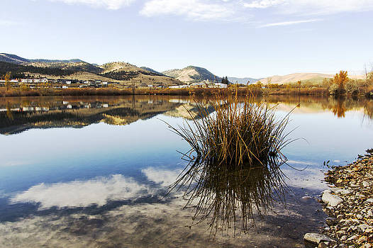 Montana reflections by Dana Moyer