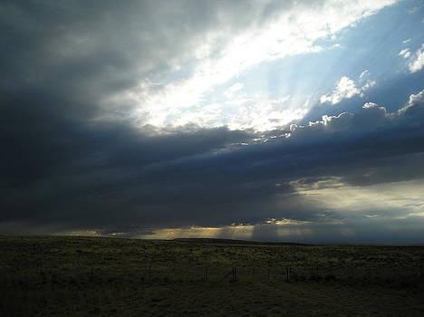 Montana Sky by Johanna Elik