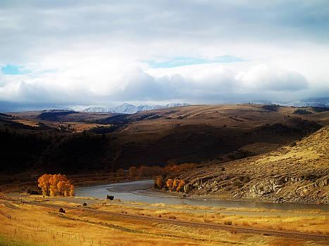 Montana by Steven Loyd