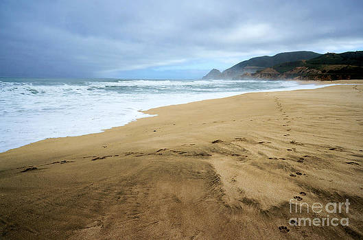 Ellen Cotton - Montara Beach