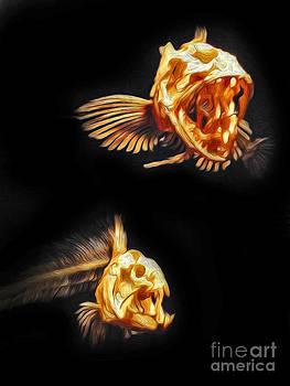Gregory Dyer - Monterey Bay Aquarium - Fish Bones - 01