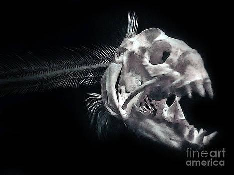 Gregory Dyer - Monterey Bay Aquarium - Fish Bones - 03