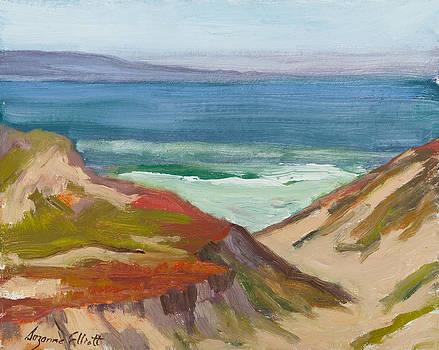 Monterey Bay Dunes by Suzanne Elliott