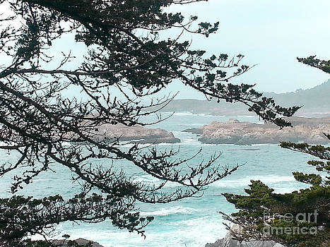 Monterey Bays Coastal View by DJ Laughlin
