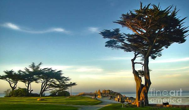 Gregory Dyer - Monterey California - 01