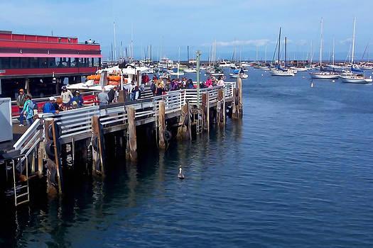 Art Block Collections - Monterey Cruise