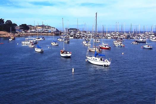 Art Block Collections - Monterey Harbor