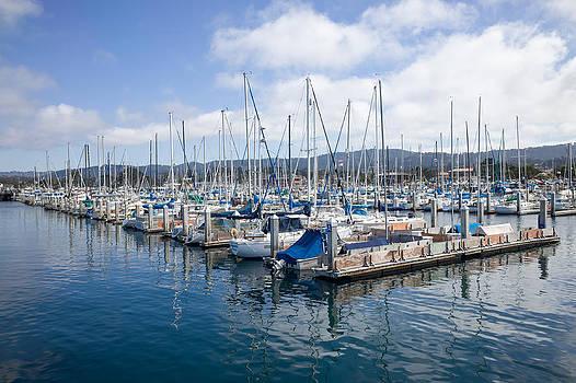 Priya Ghose - Monterey Harbor