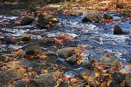 Montgomery Place Rapids by David Clark