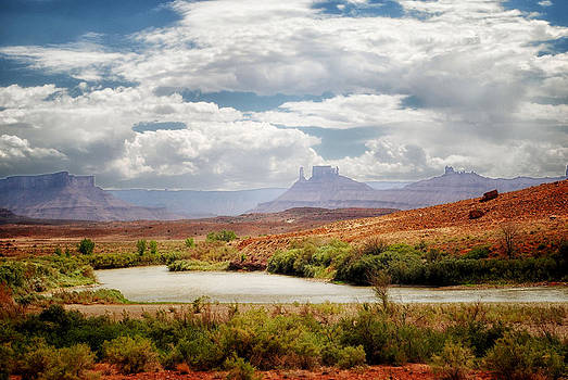 Monument Valley Beauty by Tricia Marchlik