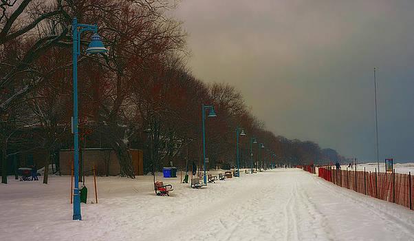 Moody Board Walk Winter by Nicky Jameson