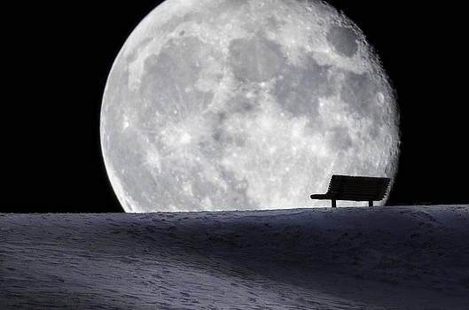 Moon Bench by Paul Geilfuss
