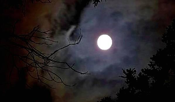 Moon by Brian Hubmann