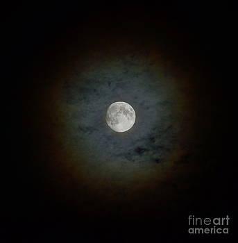 Wayne Nielsen - Moon Clouds - Rings of the Full Moon