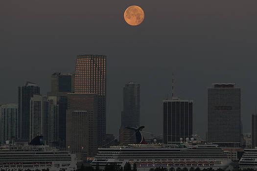 Moon Dance by S C