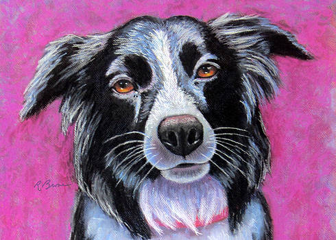 Moon Dog Border Collie by Rachel Armington