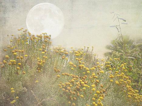 Grace Dillon - Moon Garden