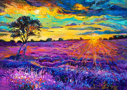 Lavender Field by Ivailo Nikolov