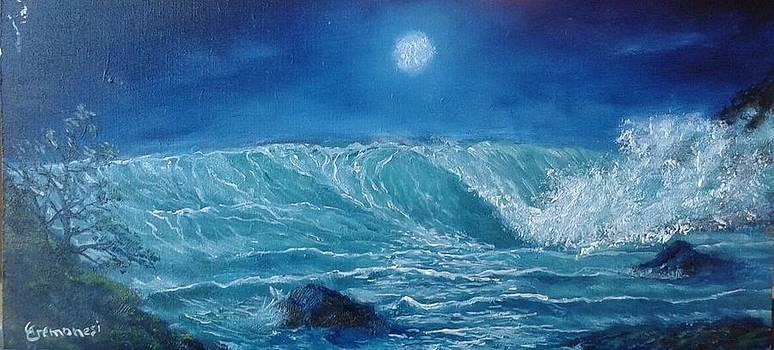 Moon light seascape by Gianluca Cremonesi