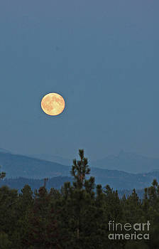 NightVisions - 757P Moon