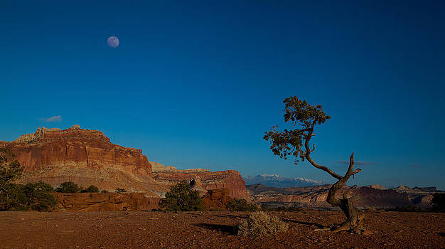 Moon Over Capitol Reef by Howard Weitzel