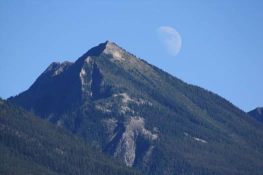 Cathie Douglas - Moon Over Mountain