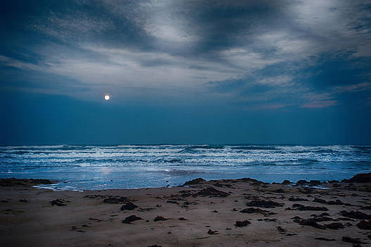 Moon over the Gulf by Tammy Smith