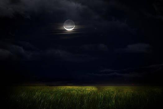 Goodnight Moon by Mark Andrew Thomas