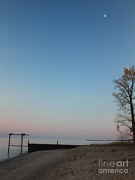 Moonrise over Lake Huron  by Kathy DesJardins
