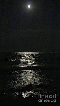 Moon rise over the Lake Huron by Kathy DesJardins