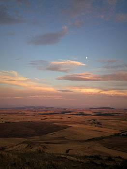 Moon Rising at Sunset in the Palouse by Victoria Porter