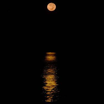 Moon Set Anna Maria Island by Rolf Bertram