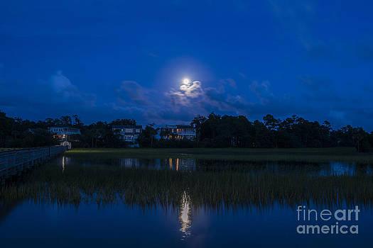 Dale Powell - Moon Sky