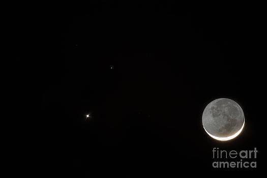 Dale Powell - Venus Mars Moon