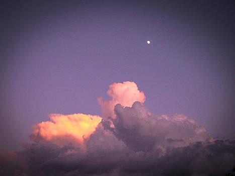 Moon Speck by Robert J Andler