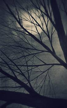 Moon Through the tree by Chris Hall
