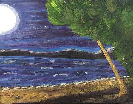 Moon Tides by Catherine Jeffrey