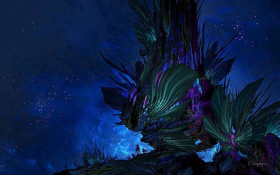 Cassiopeia Art - Moon Tree Hills