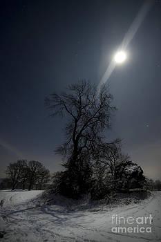 Angel Ciesniarska - Moonlight and the snow