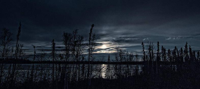 Moonlight at Midnight by Valerie Pond