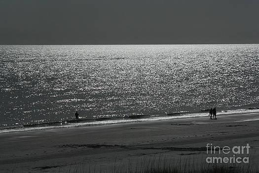 Moonlight Beach Stroll by Bob McGill