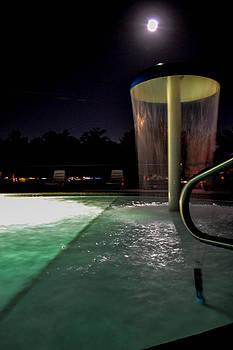 Moonlight By The Pool by Wanda J King