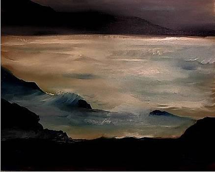 Moonlight Cocos Island Reef by Gregory Dallum