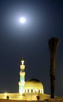 Moonlight Mosque by Heather Gordon