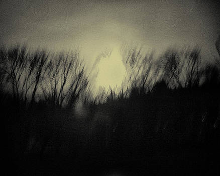 Moonlight Mystery  by Eric Ferrar