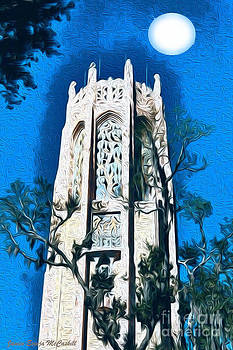 Bok Singing Tower Under the Moon by Ecinja Art Works