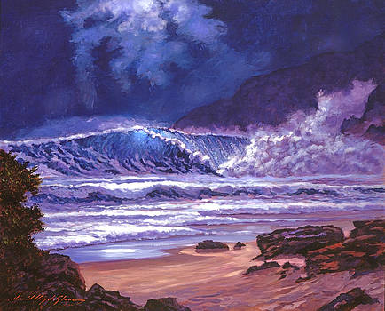 David Lloyd Glover - MOONLIGHT OVER MAKENA BEACH